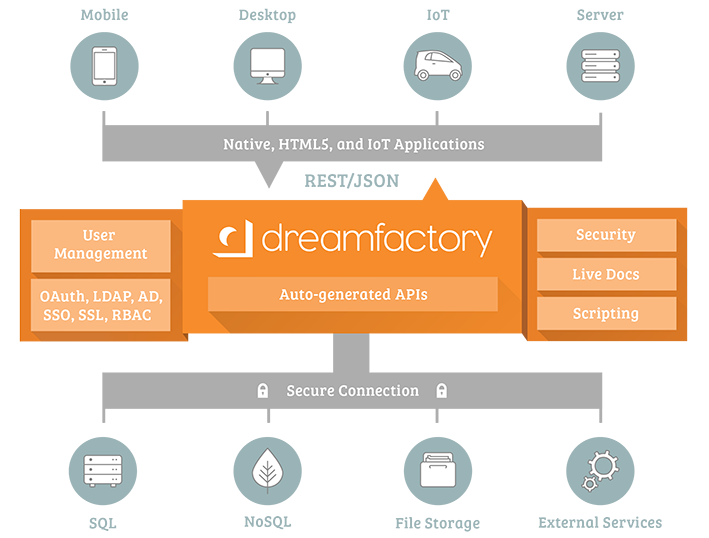 DreamFactory Infographic
